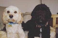 Ralph & Mnty